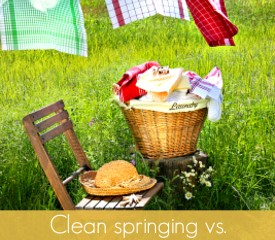Clean springing vs. Spring cleaning:  Start fresh and move forward