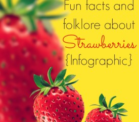 10 Fun facts and folklore about strawberries {Infographic}
