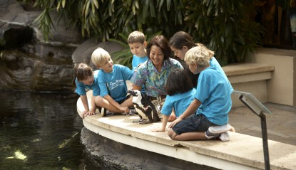 A perfect fall family vacation: Camp Penguin at the Hilton Hawaiian Village