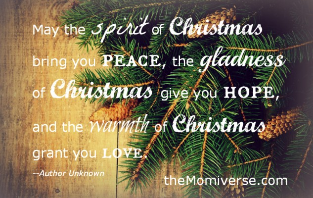 Merry Christmas to you and your family from Team Momiverse!