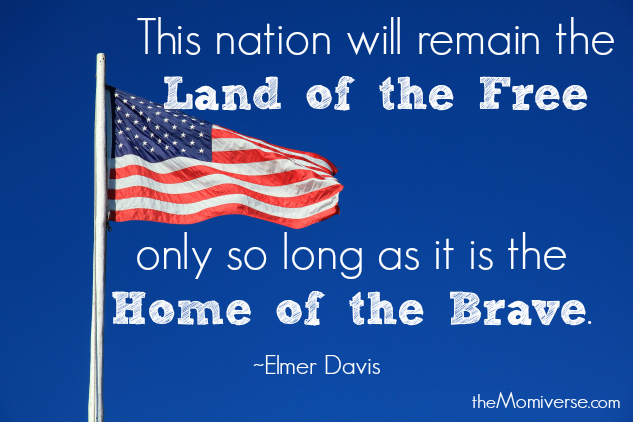Veterans Day - Proud to be an American | The Momiverse