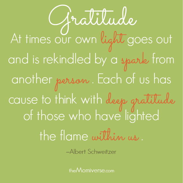 At times our own light goes out and is rekindled by a spark from another person. Each of us has cause to think with deep gratitude of those who have lighted the flame within us.   Quote by Albert Schweitzer   The Momiverse