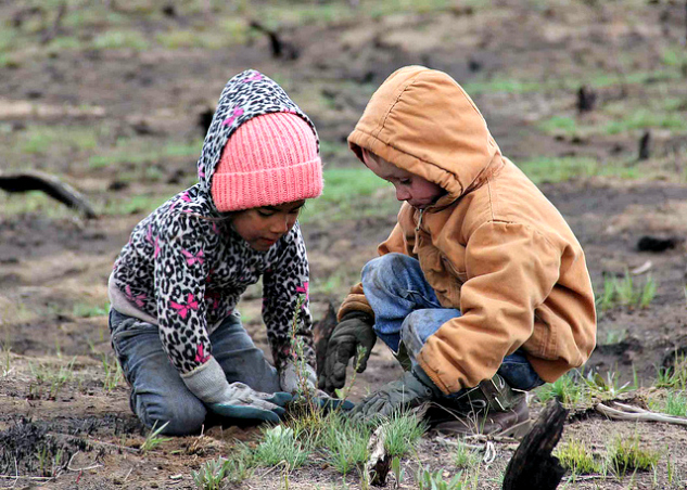 Dig in! Gardening with kids | The Momiverse | Article by Cheryl Tallman | Photo by BLM Nevada