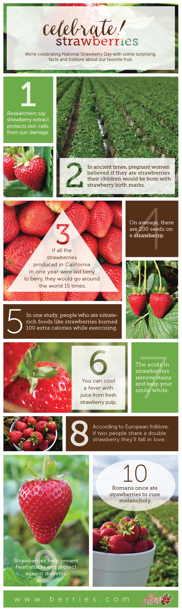 Facts and folklore about strawberries | National Strawberry Day | Infographic | The Momiverse