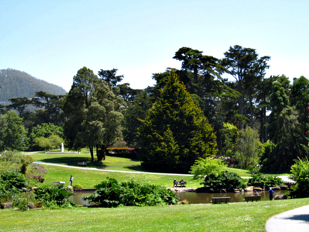 Strybing Arboretum - Golden Gate Park, San Francisco, CA | Photo by Doug Kerr via Flickr | The Momiverse