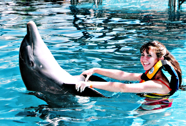 Swim with the dolphins   The Momiverse   Photo by Patti Morrow