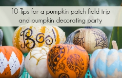 10 Tips for a pumpkin patch field trip and pumpkin decorating party | The Momiverse