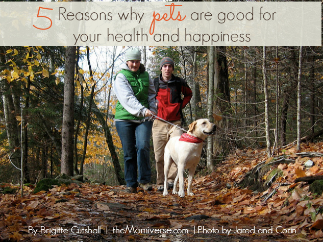 5 Reasons why pets are good for your health and happiness | The Momiverse | Photo by Jared and Corin